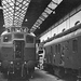 BR Sulzer Type 2's No. D5226 D5227 D5228 at Darlington Works 1963 - ID 2571