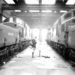 Thornaby Shed with Four  English Electric Type 3s 1965 - ID 2478