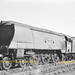 SR/BR Bulleid Class WC 4-6-2 No. 34092 at Woodham Brothers Scrapyard 1966 - ID 2935