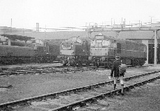 BRCW Type 2 D5379 at Thornaby Shed 1965